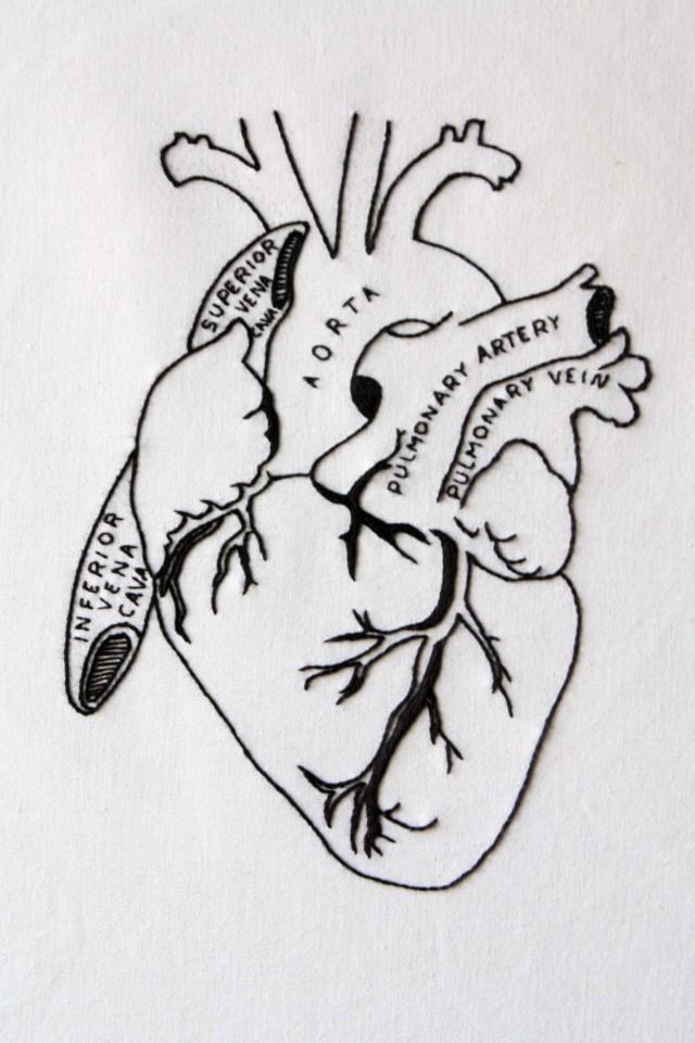 heart,4